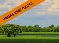 pantanal-expedicao-gaia