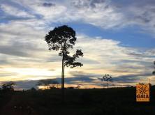 expedicao-amazonia-04