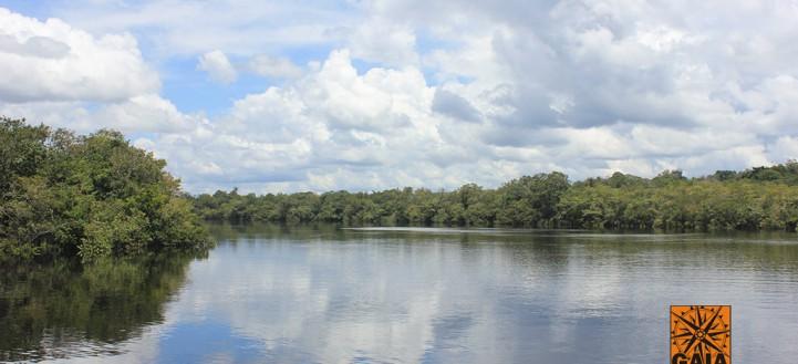 AMAZÔNIA 2006