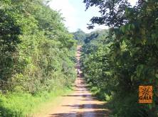 expedicao-amazonia-34