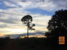 expedicao-amazonia-39