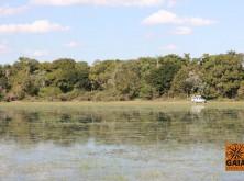 expedicao-pantanal-13