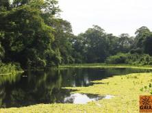 expedicao-pantanal-20