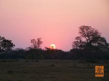 expedicao-pantanal-29
