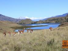 expedicao-patagonia-5