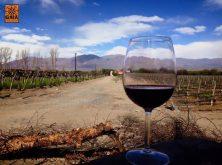 expedicao-patagonia-argentina-e-carretera-austral-chilena (1)