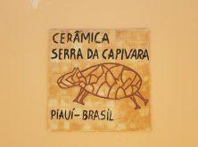 expedicao-canions-do-piaui-fevereiro-2020-parte-2 (39)