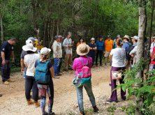 expedicao-canions-do-piaui-fevereiro-2020-parte-2 (42)