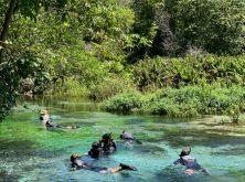 052_Overlander_Gaia_Pantanal-1