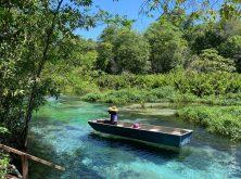 055_Overlander_Gaia_Pantanal-1