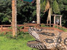 061_Overlander_Gaia_Pantanal-1