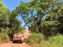 078_Overlander_Gaia_Pantanal-1
