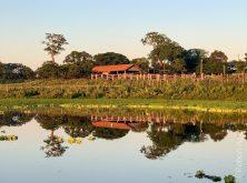 113_Overlander_Gaia_Pantanal-1