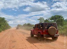 184_Overlander_Gaia_Pantanal