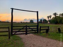 261_Overlander_Gaia_Pantanal