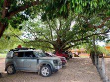 290_Overlander_Gaia_Pantanal