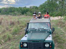 305_Overlander_Gaia_Pantanal