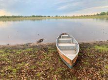 347_Overlander_Gaia_Pantanal