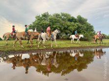 359_Overlander_Gaia_Pantanal