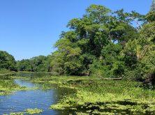 overlander-gaia-pantanal-18