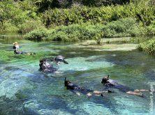 051_Overlander_Gaia_Pantanal.JPEG