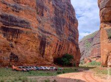 expedicao-sertao-nordestino-pelos-caminhos-da-caatinga (9)